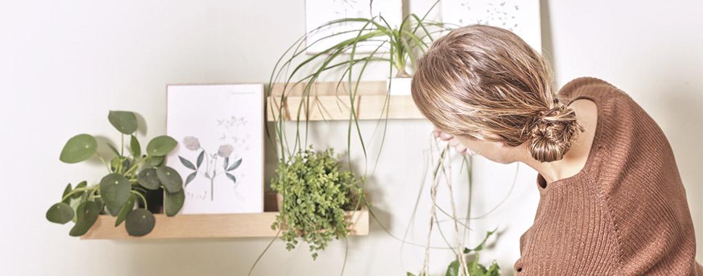 brug masser af grønne planter i stuen